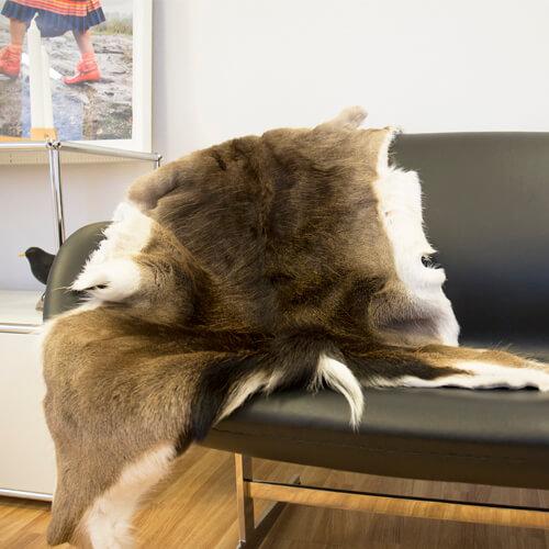 Fallow deer skin 60x100 1