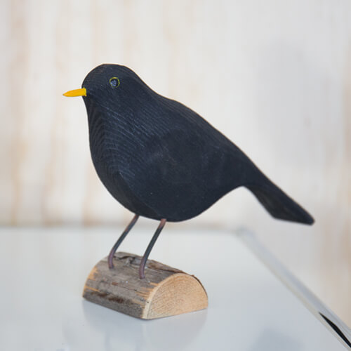 Blackbird in wood